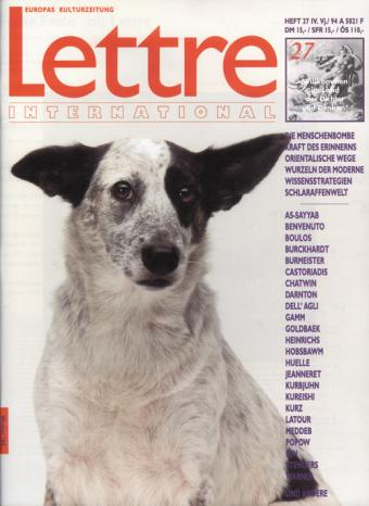 Cover Lettre International 27, Rosemarie Trockel