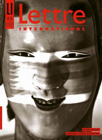 Cover Lettre International 83, Dieter Appelt