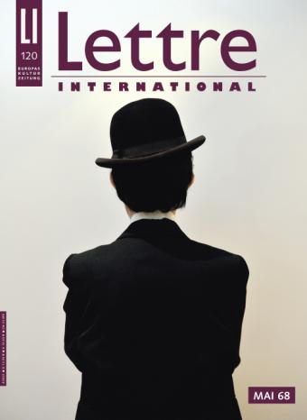 Cover Lettre International, Gonzalez-Foerster