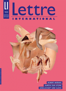 Cover Lettre International, Monica Bonvicini